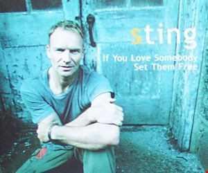 Sting   If You Love Somebody Set Them Free   DJ Manny Q Remix
