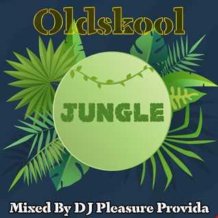 Pleasure Provida - Oldskool Jungle 2021