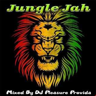 Pleasure Provida - Jungle Jah