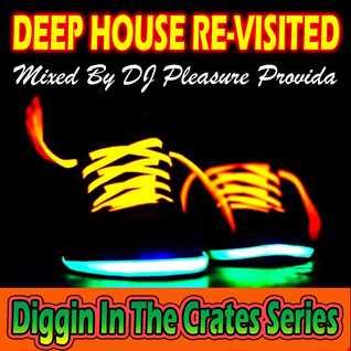 Pleasure Provida   Deep House Re Visited Vol.01