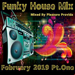 Pleasure Provida - Funky House February 2019 Part1