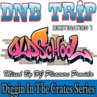 Pleasure Provida - DnB Trip Destination 1