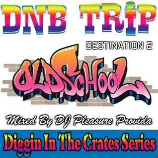 Pleasure Provida - DnB Trip Destination 2