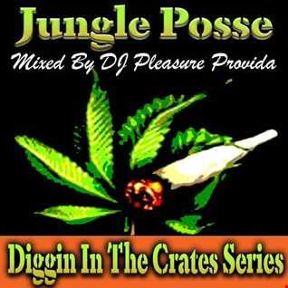 Pleasure Provida - Junglist Posse   Oldskool