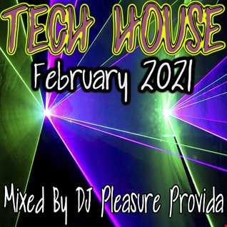 Pleasure Provida - Tech House February 2021