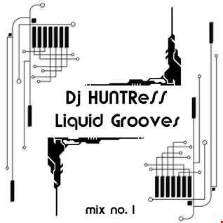 DjHUNTReSS - Liquid Grooves (3-31-2016)