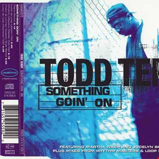 todd terry something going on (3316 dj dance remix)