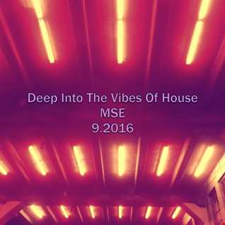 Deep Into The Vibes Of House