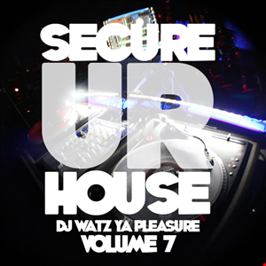 DJ. Watz Ya Pleasure? Secure Ur House - 2013 Vol 7.