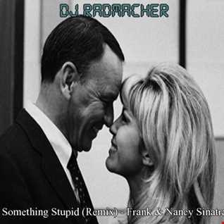 Something Stupid (Remix)