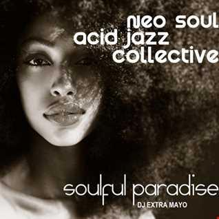 NEO SOUL ACID JAZZ COLLECTIVE - SOULFUL PARADISE