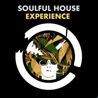 Soulful House Experience Vol.3