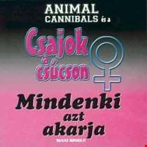 Khiflee - Animal Cannibals feat Gergely Éva & Völgyesi Gabriella - Mindenki azt akarja (Megamix)