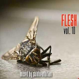 FLESH   vol. 10