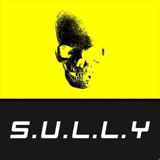 Sully - Revolution (Wavepuntcher Remix)