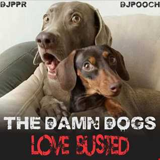 THE DAMN DOGS: LOVE BUSTED  feat. DJPPR & DJPOOCH