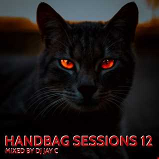 HANDBAG SESSIONS 12 -  JUNE 2021