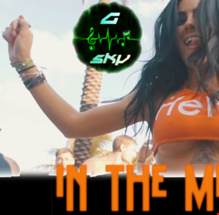 DJ G Sky   In The Mix 14