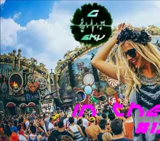DJ G Sky   In The Mix 13