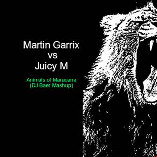 Martin Garrix vs. Juicy M.   Animals of Maracana  (DJ Baer Mashup)