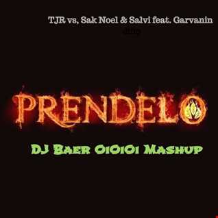 TJR vs. Sak Noel & Salvi feat. Garvanin  - Time To Prendelo (DJ Baer OiOiOi Mashup)