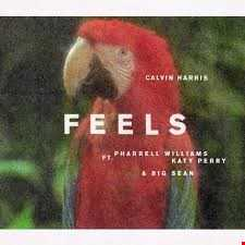 Feels (Paul Anthoni Remix)   Calvin Harris ft. Pharrell Williams, Katy Perry, Big Sean