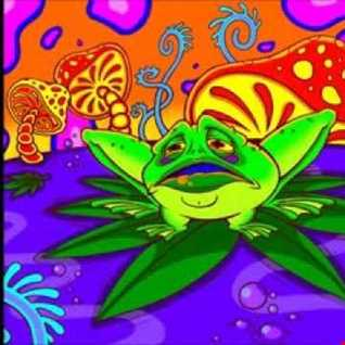 DJ Froggers Mash up SHYFX/CLIPZ/HAZARD