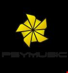 Dj PTAGRAMMA_cybernetic mayhem Forest mix