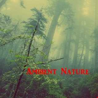 Ambient Nature 4