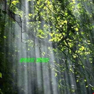 Ambient Nature 2