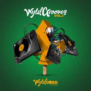 2020 WYLD HOUSE GROOVES MIX (REC 2020 08 31)