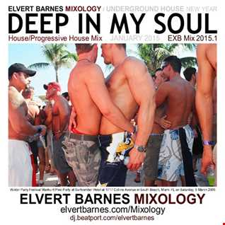 January 2015 DEEP IN MY SOUL Underground House / Gay Circuit (New Year) Mix
