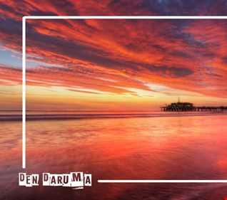 House Essentials #1 with Den Daruma