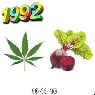 1992   101918 Dope Beats (320kbps)