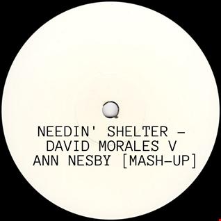 Needin' Shelter - David Morales V. Ann Nesby [320kbps]