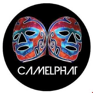 DJ Benny Pill -  Mixtape Flava - Vol 84 - Camelphat Flava