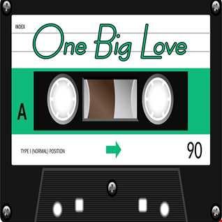 ONE BIG LOVE