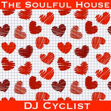 DJ Cyclist   The Soulful House