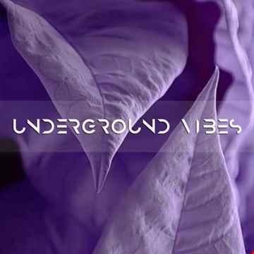 PLUD - Underground Vibes #267 (2021.04.18)