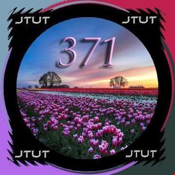 Journeys Through Trance 371
