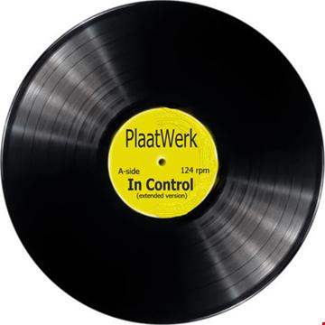 in control remix