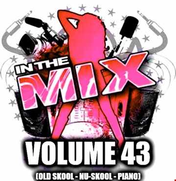 Dj Vinyldoctor - In The Mix Vol 43 (Old Skool - Nu-Skool - Piano)