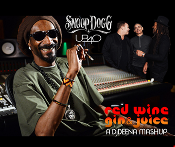 SNOOP DOGG VS UB40 - RED WINE, GIN & JUICE DJDEENA MASHUP